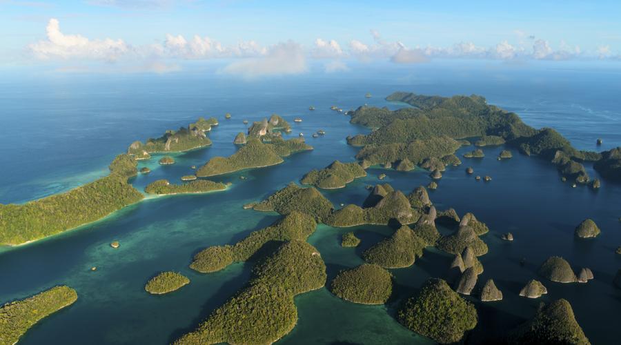Our Planet (Credit: Gemilang Dini Ar-Rasyid /Silverback/Netflix)