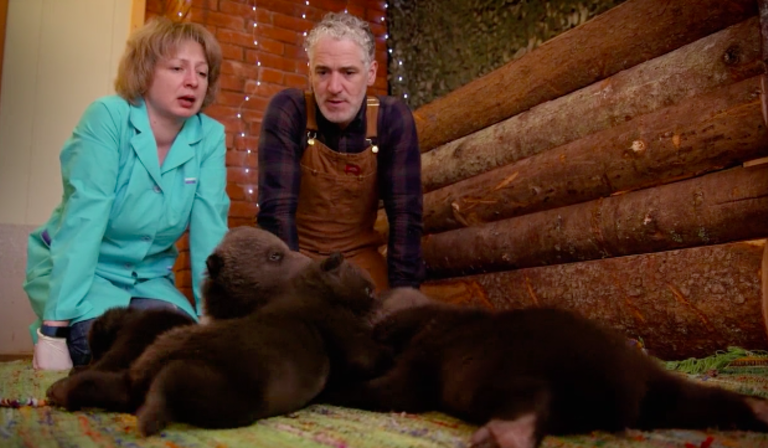 Grizzly Bear Cubs & Me